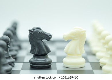 Business and Competition Concept.  Black and white knight chess pieces face to face on chessboard.