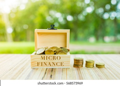 Business Concept :   MICRO 