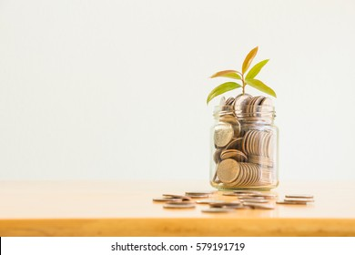 Business concept, saving planning with plant growing on coins in glass jar on wooden table over white wall background with space