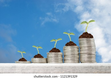 Business concept with stacks of coins with growing plants against blue sky background