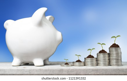 Business concept withpiggy bank,  stacks of coins with growing plants against blue sky background