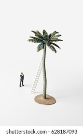 Business figure, ladder, and palm tree