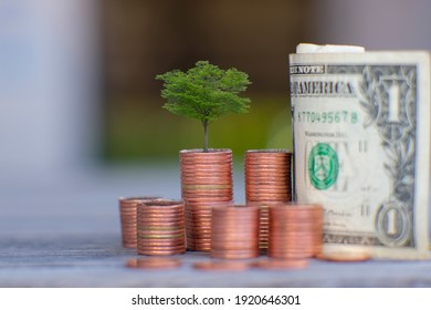 business or finance saving money and business growth concept