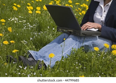 Business at a flower meadow