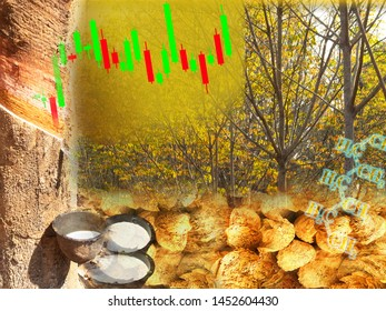 business graphic of rubber tapping tree and lumps under Hevea brasiliensis leaf background and candle stick profit design for trading concept