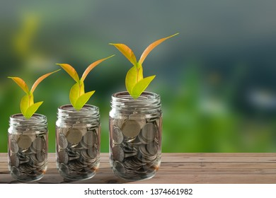 Business growth with coins and green background.