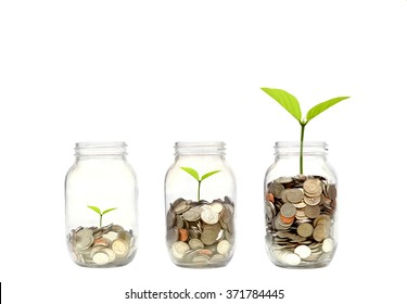Business growth with csr practice / Green investment concept