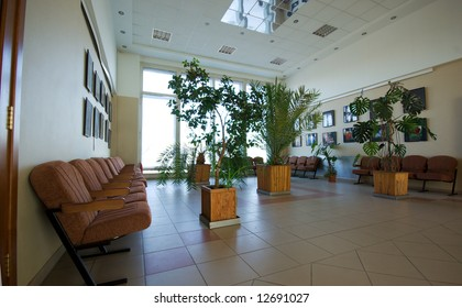 business hall interior with plants armchairs and window