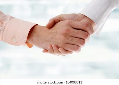 Business handshake: businesswoman and businessman make agreement