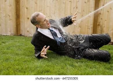 Business man being sprayed with water