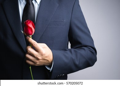 Business man hand with red rose flower on white background