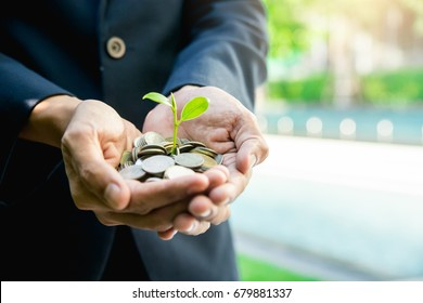 Business man holding little tree  growing on money,Money growing and saving with a man holding coin