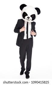 Business Man with Panda Head