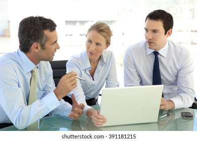 Business managers meeting and working on same laptop together