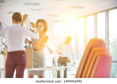 Business people packing up on box in office with yellow lens flare in background