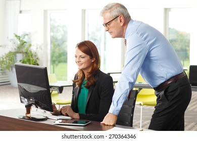 Business people portrait. Middle age businesswoman and senior businessman consulting while sitting at office in front of laptop. Businesswoman looking at computer and smiling.
