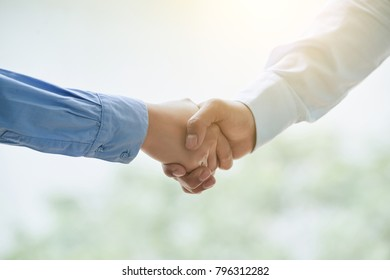 Business people shaking hands before meeting