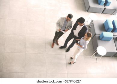Business people standing in business building and having conversation. African men reading document. Space for copy.