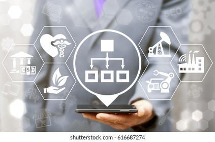 Business sectoral flowchart concept. Man offer smartphone with block diagram location icon on virtual screen. Business, industry, medicine, agriculture, finance strategy network communication