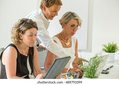 business team working in open space