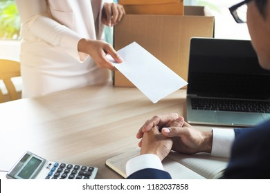 The business woman has a brown cardboard box next to her body and sends a letter of resignation to the executive. Include about resignation, job placement and vacancies.