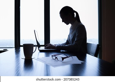 Business woman using a laptop computer at the office.
