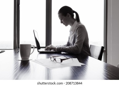Business woman using laptop computer.