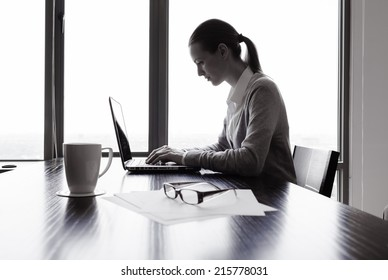 Business woman using a laptop computer in the office