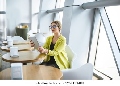 Business young stylish woman in glasses sits at a table in a cafe and holds a tablet in her hands.
