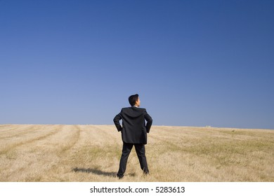 a businessman analising the field