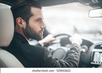 Businessman in car. Rear view of young handsome man looking on the right while driving a car