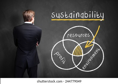 businessman in front of a diagram about sustainability