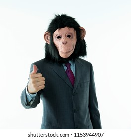 Businessman with head of monkey on white background.