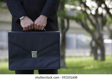 Businessman holding briefcase, cropped image