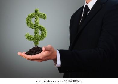 businessman holding dollar sign bush