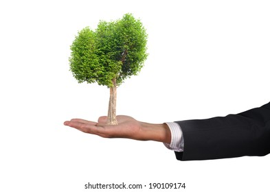 Businessman holding a tree on hand