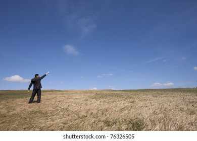 businessman looking away at the field and pointing to the sky