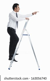 Businessman on a ladder and pointing