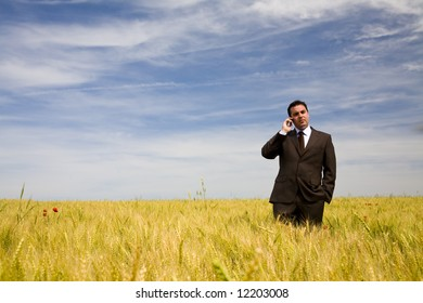 businessman at the phone in the field under blue sky