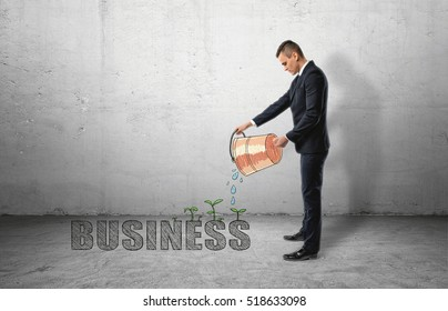 Businessman pouring water from a bucket to 'buisness' word with green plants sprouting from it. Prosperity and well-being. Thriving business. Productive work.