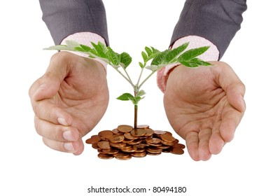 Businessman protecting plant sprouting from a pile of coins - good investment and money concept