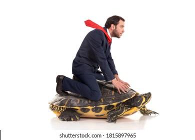 Geschäftsmann, der auf einer Schildkröte einzeln auf weißem Hintergrund fährt