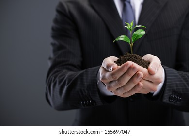 Businessman with seedling in his hands