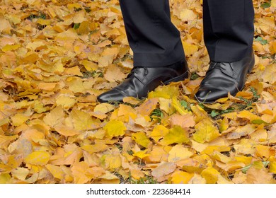 Businessman shoes on foliage