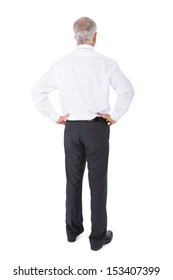 Businessman standing back to camera hands on hips on white background