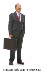 Businessman standing with briefcase