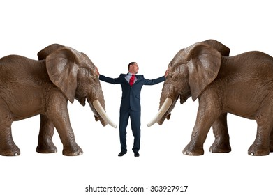 businessman trying to restrain an elephant