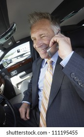 Businessman using cell phone sitting in the car