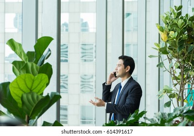 Businessman using mobile phone near office window at receptions area,Negotiation concept
