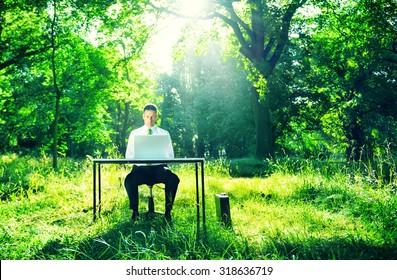 Businessman Working Computer Forest Green Concept